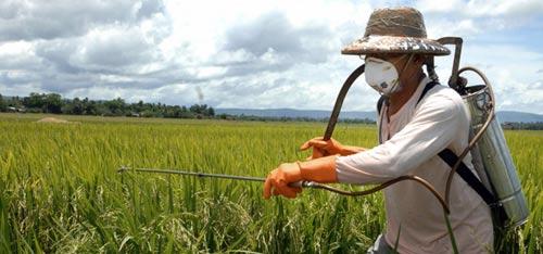 Борьба с вредителями и болезнями в садах и огородах