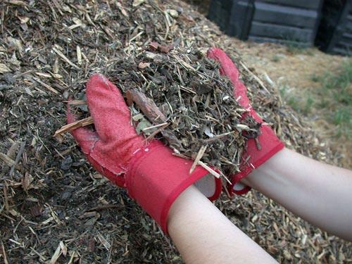 Мульчирование почвы – что это такое?
